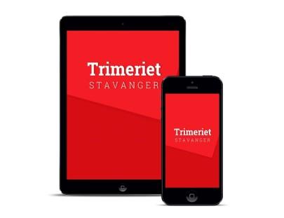 Trimeriet